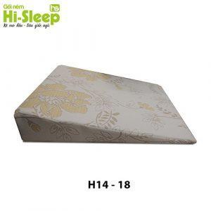 H1418