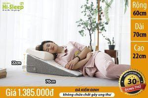 Gối nêm Hi-Sleep loại 22 cm