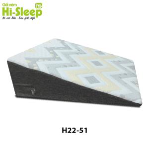 H2251