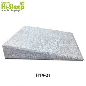 H1421