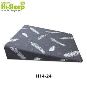 H1424