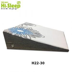 H2230